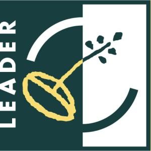 Leader+färg logga